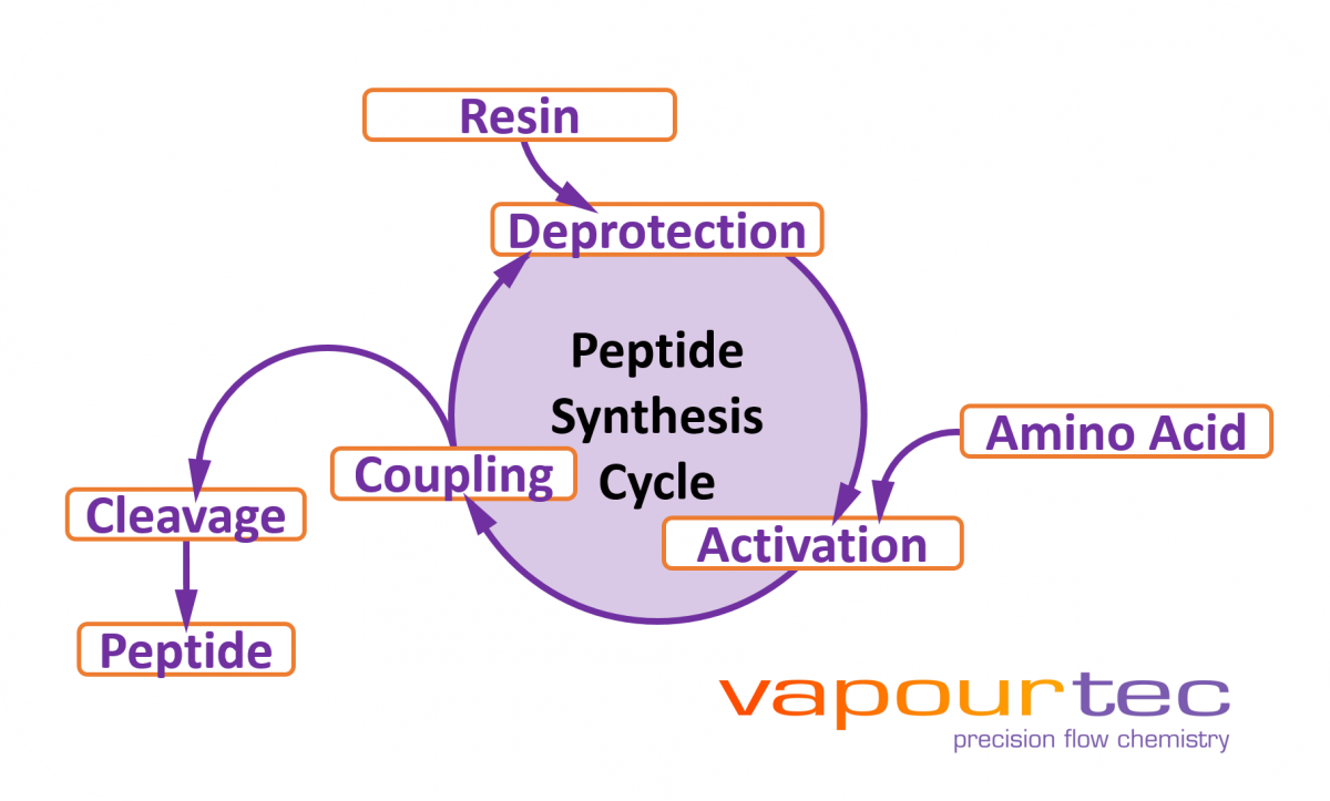 Peptide synthesis and flow chemistry